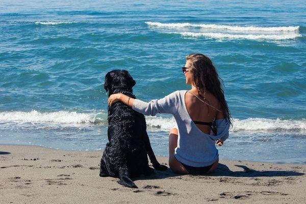 Urlaub mit Hund auf Rügeen