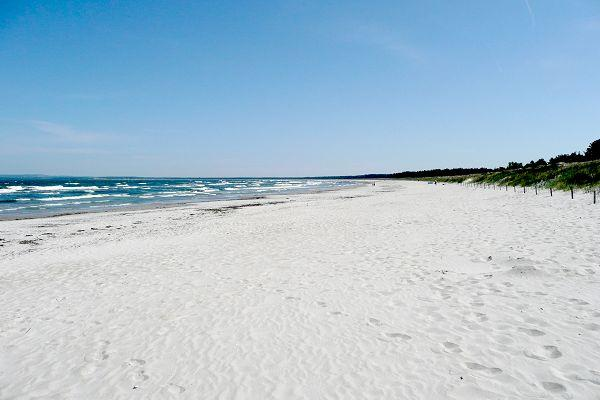 Strand in der Schaabe