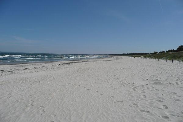 Strand Schaabe