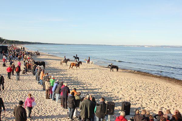 Pferderennen im Ostseebad Binz