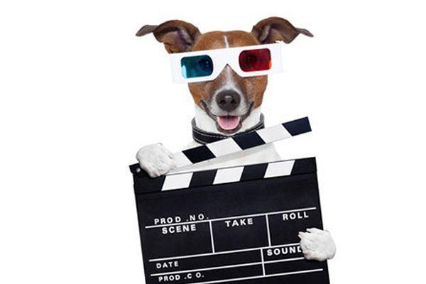 10 Tipps zur Videoproduktion